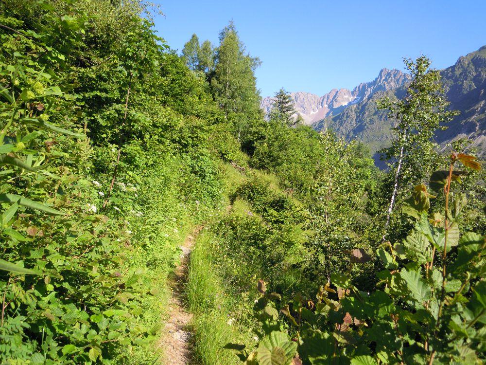 Chemin de Pétarel