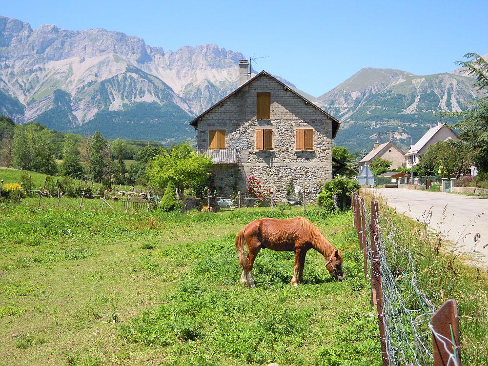 Poligny cheval
