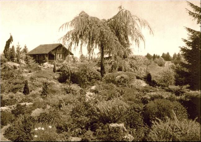JARDIN-DE-AMBLE-GRAS.jpg