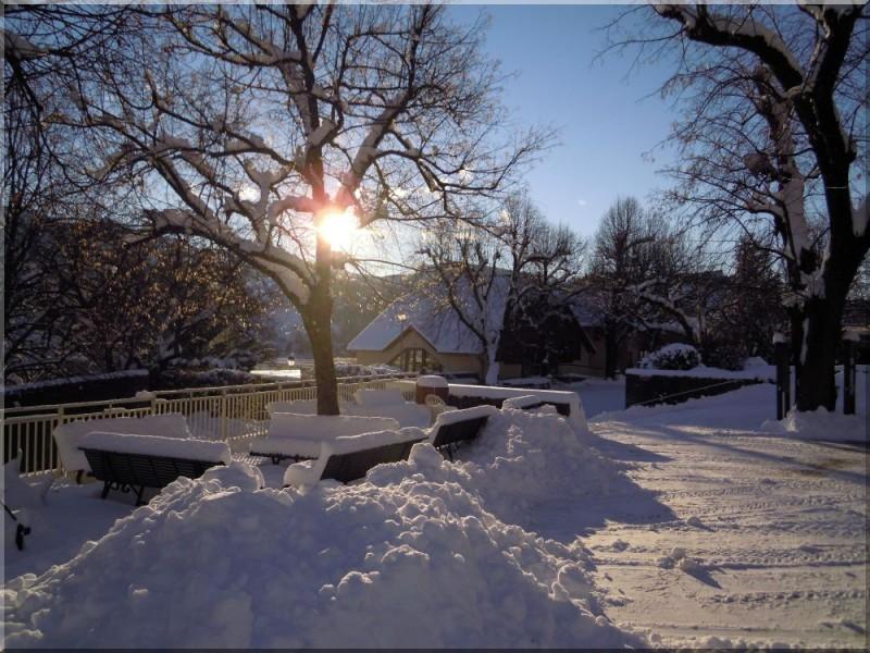 Le laus neige