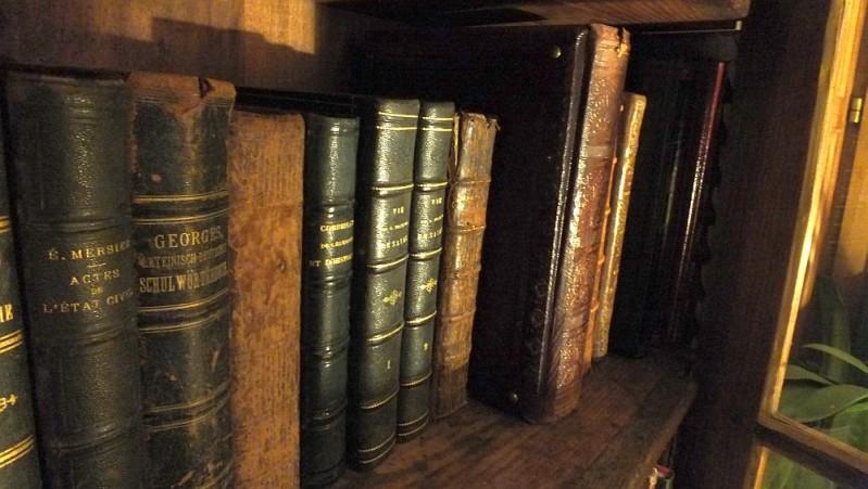 livres-dominique-Villars.jpg